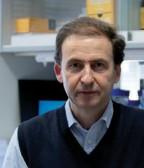 Dr. Alberto  Orfao